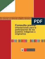 ConsultaPrevia_orientaciones.pdf