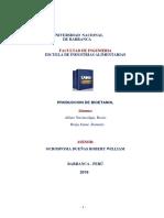 Monografia de Bioetanol (Termo)