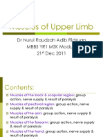 2. MBBS MSK YR1 Muscles of Upper Limb