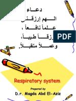 Ppp Respiratory