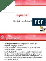 lipidos-ii.ppt