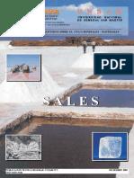Argentina. SEGEMAR - UNSAM.   Publicación técnica 9.  Sales.pdf