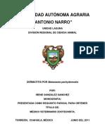 Dermatisis Por Malassezia P.