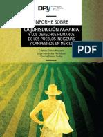 Informe sobre la Jurisdicción Agraria y los pueblos indígenas