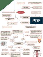 285443489-mind-map-sistem-pencernaan-makanan.pptx