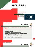 8. Neoplasias