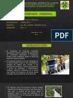 EXPO_ORDENACION.pptx