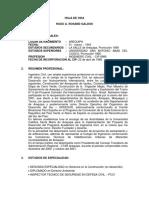 PLAN 13129 Hoja de Vida - Ing. Hugo Rosand Galdos 2012