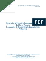 Desarrollo de Ingeniería Conceptual 17.01