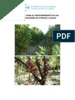 Vinculacion Manual de Mantenimiento de Citricos y Cacao Borrador 1