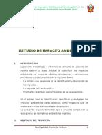 ESTUDIO IMPACTO AMBIENTAL.doc