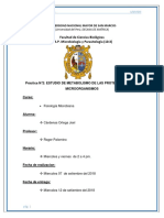 INFORME N·2.docx