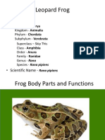 Frogbodypartsandfunctions Leopard Frog