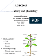 Plant Anatomy and Physiology 1(1)