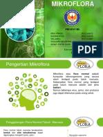 Mikroflora Alami Tubuh