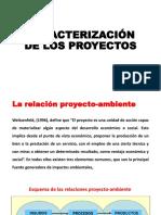 Caracterización de Los Proyectos