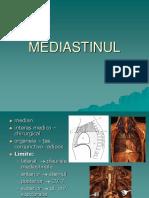 06 mediastin
