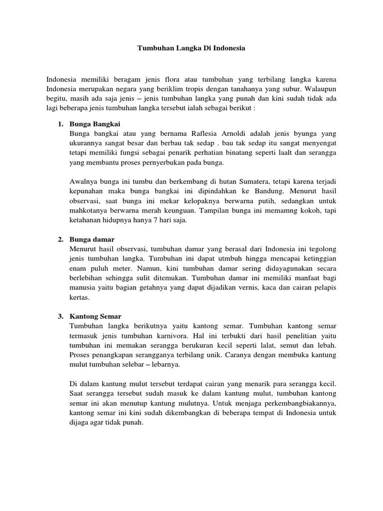 Contoh Teks Laporan Hasil Observasi Tumbuhan Damar Berbagai Teks Penting