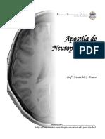 Neuropsicologia-1.pdf