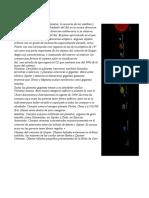 Práctica 6 Imagen y Texto (Práctica 6)