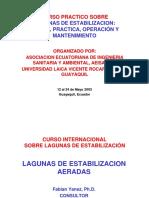 Curso Practico Lagunas aeradas.pdf