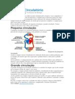 Sistema Circulatório.docx