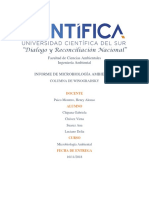 INFORME COLUMNA DE WINOGRASKY.pdf
