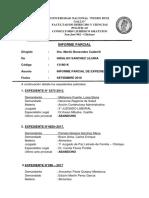 Informe Parcial de Expedientes Corregidoooo