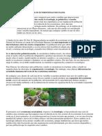 LOS ECOSISTEMAS SOCIALES.docx