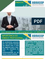 Perfil Dos Síndicos Brasil