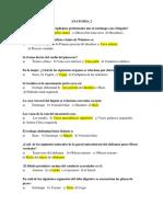 Anatomia 2 Resumen