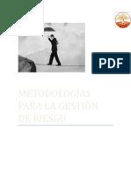 Metodologia Para La Gestion Del Riesgo