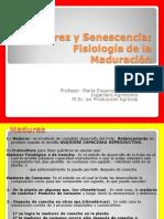 Clase 4 - Fisiologia de la maduracion.pdf