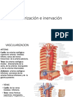 esofago.pptx