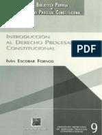 INTRODUCCION AL DERECHO PROCESAL CONSTITUCIONAL - IVAN ESCOBAR FORNOS.pdf