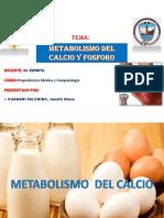 Metabolismo Del Calcio y Del Fósforo