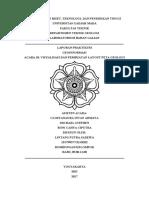 Visualisasi dan Pembuatan Layout Peta Geologi.pdf