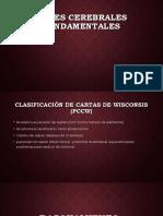 Pocesos Cognitivos Esposicion 10-07-18