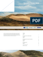 Rapport Conference Dynamic Dunes 2015