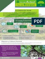 2012 INVESTIGACION La Basura en Miles de Esquinas de La Ciudad