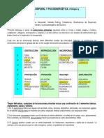 Psicoterapia corporal y psicoenergética- Roberto Navarro.doc