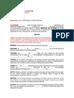 Derecho de Peticion 1.1