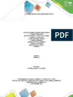 Etapa 3 Mediciones Epidemiologicas Grupo 358009_87