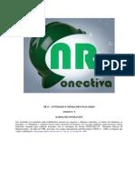 NR-15 ANEXO 05