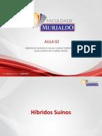 SUINO - aula 2 PDF.pdf