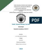 HC Carrión Plantilla - Respiratorio - copia.docx