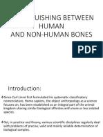 Distinguishing Between Human and Non-human Bones