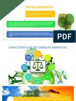 Diapos de Derecho Ambiental Keiko y Arnold