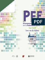 PEF_2018-guia (1).pdf