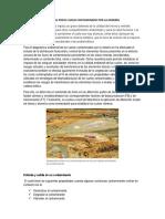 Diagnostico Ambiental Por El Suelo Contaminado Por La Minería